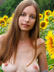 Admirable teen girl stripping clothes and showing attractive body in a field of sunflowers. - Erotic and nude girls pics at SoloTeenPics.com