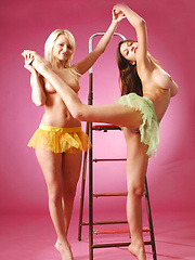Playing on the ladder with two young bombshells is sexy and exciting. - Erotic and nude girls pics at SoloTeenPics.com