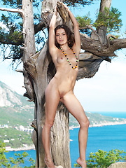 A carefree, outdoor jaunt with a fun and engaging Divina posing naked under a tree. - Erotic and nude girls pics at SoloTeenPics.com