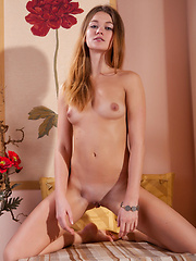Solveig - PRESENTING SOLVEIG - Erotic and nude girls pics at SoloTeenPics.com